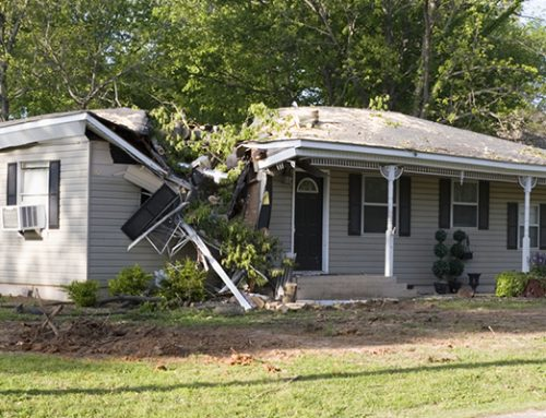 What to Look For in Homeowner Insurance